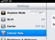 วิธีตั้งค่า APN iPad 3G