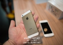 iPhone5s Gold VS White