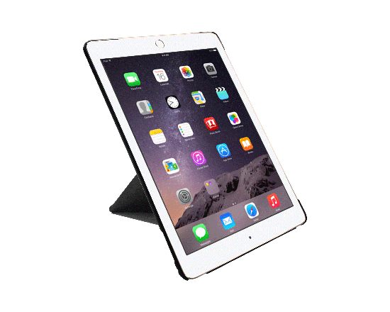 ocoat-simple-ipad-air-2-3